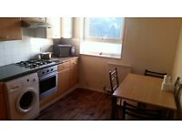 Spacious Two Bedroom Flat - Crystal Palace - SE19