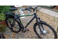 Raleigh Velo XC Electric Bike