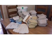Reusable washable Nappies (Bumgenius, Tots Bots) + bin, liners, wash bags