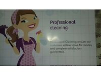 CLEANING PRIVATE HOMES AND OFFICES !!!!!