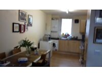 Cool flat in Hackney with Double room plus ensuite £630