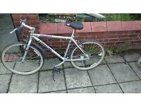 Barracuda hybrid bike