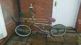Custom Lowrider bicyle