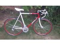 Bridgestone racer one of many quality bicycles for sale