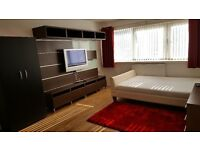 Modern Furnished 2 Bedroom flat Stunning condition minutes away from Bethnal Green Station. No Fees