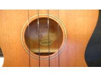 U320C concert ukulele