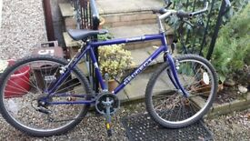 Peugeot Evolution 21 bicycle