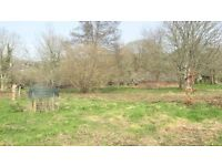 3 Acres pasture. Stream, spring and mains water.
