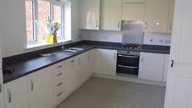 Home improvements renovations handyman painter decorators bathrooms decking tilling laminate