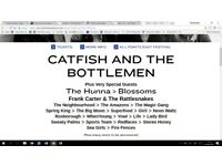 2 tickets for Catfish and the Bottlemen all dayer in Victoria Park Friday 1 June + Blossoms,Amazons