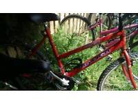Here's a very nice teens or ladies Raleigh bike for sale