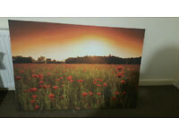 Poppy field wall canvas