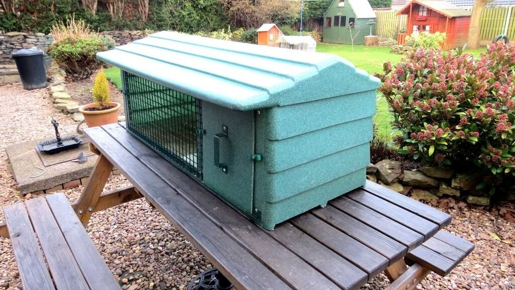 How To Build A Guinea Pig Hutch For Outside