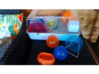 Hamster cage with multiple accessories for sale