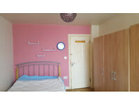 Bright double room available now