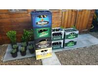 Beer crate / man cave / home brewing