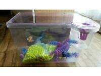 Kids 3D Nemo Fish Tank with Gravel and plant