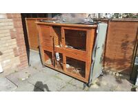 2 storey rabbit hutch and 2 mini lop rabbits