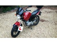 Yamaha YBR 125cc - Passed Mod2 so on to bigger things now so selling, reliable good first bike.