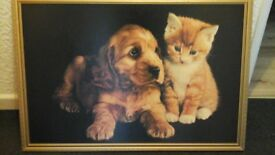 Large print of puppy and kitten