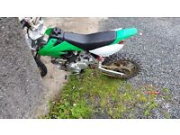 125cc pitbike ono