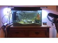 2 foot fish tank free local delivery