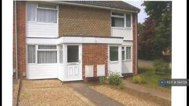 2 bedroom house in St Michaels Road, Hitchin, SG4 (2 bed)