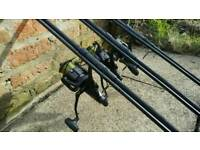Carp fishing rods & reels combo