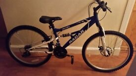 Appollo Radar Mountain Bike