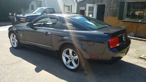2007 Ford Mustang V6, Manual, Pony Package, Spoiler, 2 Sets of R Cambridge Kitchener Area image 3
