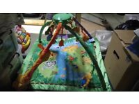 Fisher price forest mat