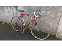 Falcon Road Bike