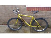 FOCUS 24-speed mountain-bicycle *IDEAL FOR STUDENTS*