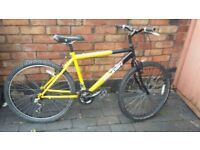 Nice Raleigh Bike