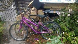 2 old bikes