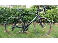 Custom Road Bike