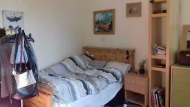 Large double room for rent in 2 bedroom flat