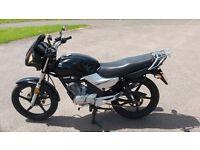 Yamaha YBR 125 Black 2009 Plate (Front Cowling Model) Great Learner Bike