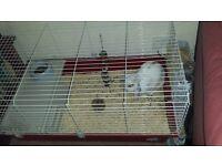 Indoor rabbit hutch 100cm
