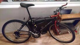Raleigh bicycle / bike, men/ gentlemen