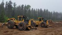 grapple skidder operator