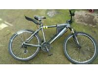 Claud Butler Adult bicycle