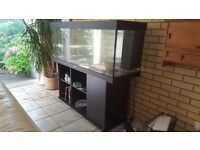 5ft Fish Tank with Cabinet Stand