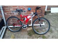 Mountain bike (used)