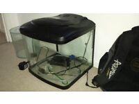 Interpet Fish Pod, 48 litre fish tank.