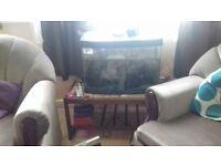 Fish tank, accessories & fish for sale