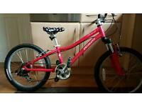 Specialized hotrock girls bike