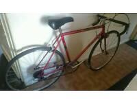 Apollo crusader road bike