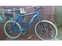 mens mountain bike mongoose tyax