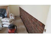 Plastering/damp treatments